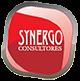 Synergo Consultores